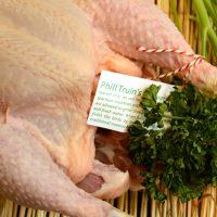!Phil Truin Chicken